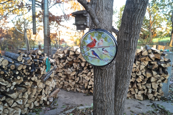 November 11, 2014:  Firewood Cut, Split and Stacked